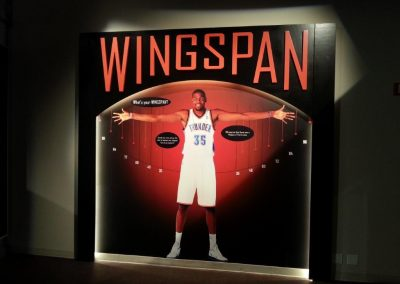 's Cell Images for Basketball HOF 8.5.14 (1)