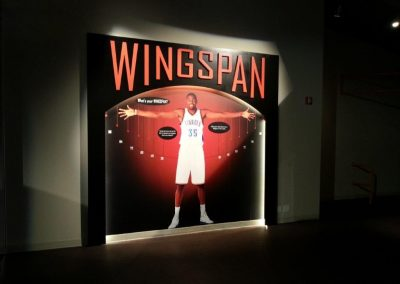 's Cell Images for Basketball HOF 8.5.14